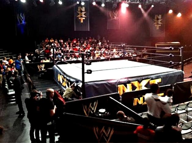 WWE NXT Logo - 2013