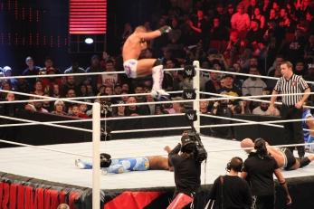 Royal_Rumble_2015 (18)