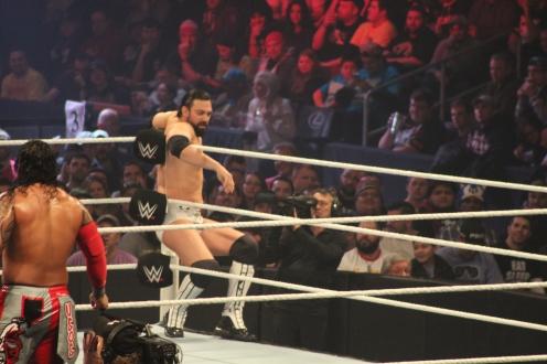 Royal_Rumble_2015 (30)