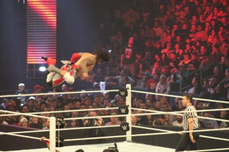 Royal_Rumble_2015 (33)