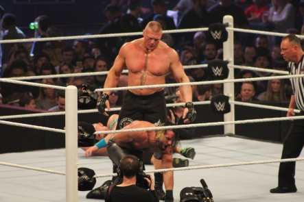 Royal_Rumble_2015 (47)