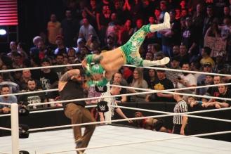 Royal_Rumble_2015 (69)