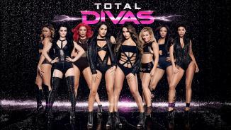 WWE Total Divas Header-2014